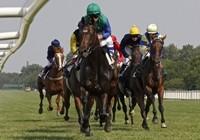 horserace01