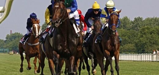 horserace1