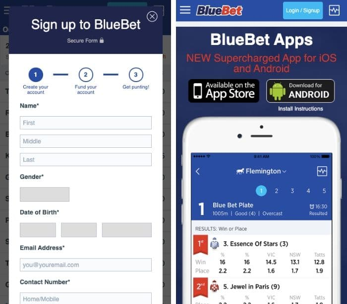 download bluebet app
