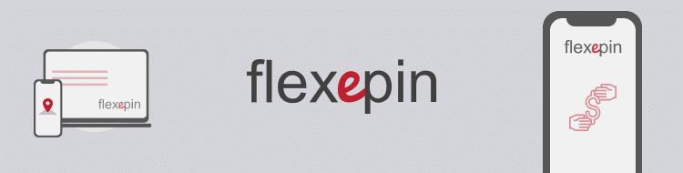 flexepin company info